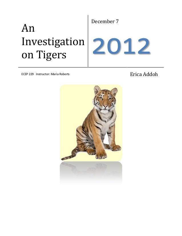 December 7AnInvestigationon Tigers                            2012ECEP 229 Instructor: Maria Roberts                Erica ...