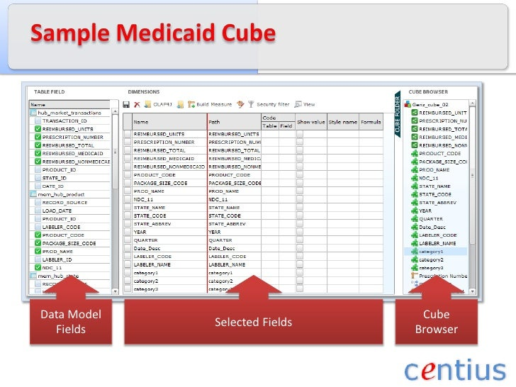 Sample Medicaid Cube<br />Data Model<br />Fields<br />Selected Fields<br />Cube Browser<br />