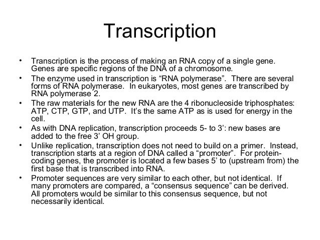 central dogma process