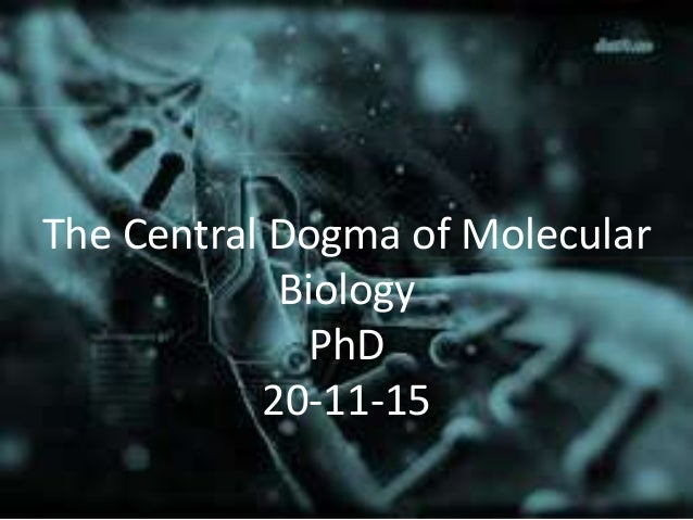 The Central Dogma of Molecular Biology PhD 20-11-15