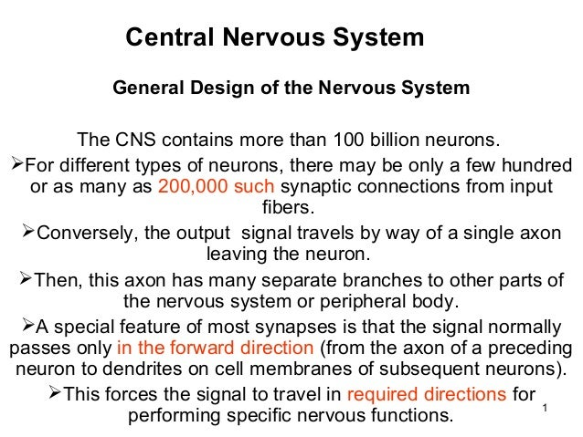 Central Nervous System General Design of the Nervous System The CNS contains more than 100 billion neurons. For different...