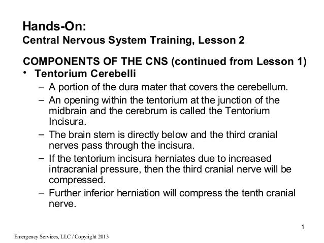 1Emergency Services, LLC / Copyright 2013COMPONENTS OF THE CNS (continued from Lesson 1)• Tentorium Cerebelli– A portion o...