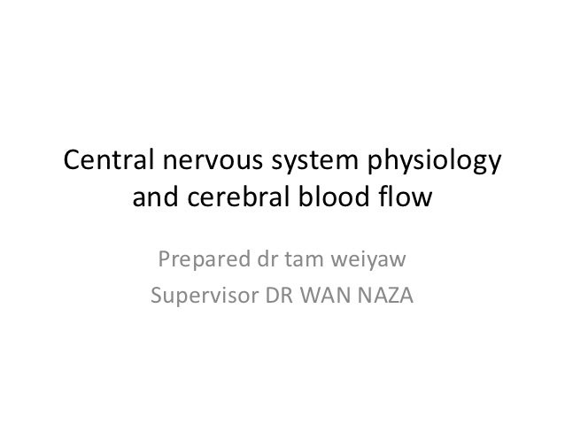 Central nervous system physiology     and cerebral blood flow       Prepared dr tam weiyaw      Supervisor DR WAN NAZA