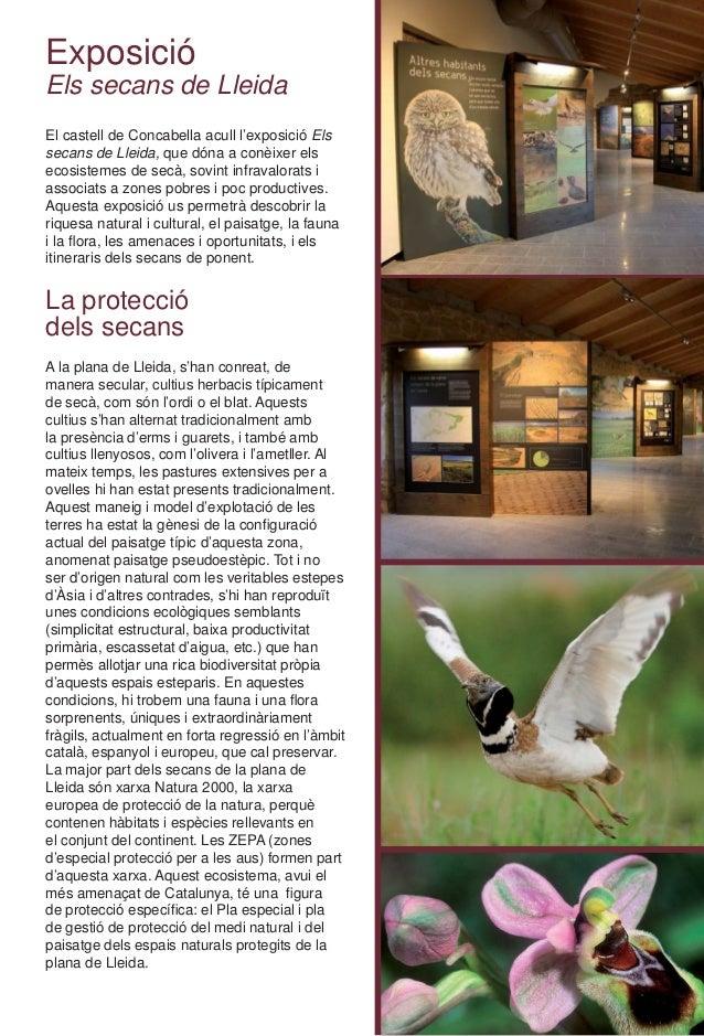 Exposició Els secans de Lleida El castell de Concabella acull l'exposició Els secans de Lleida, que dóna a conèixer els ec...