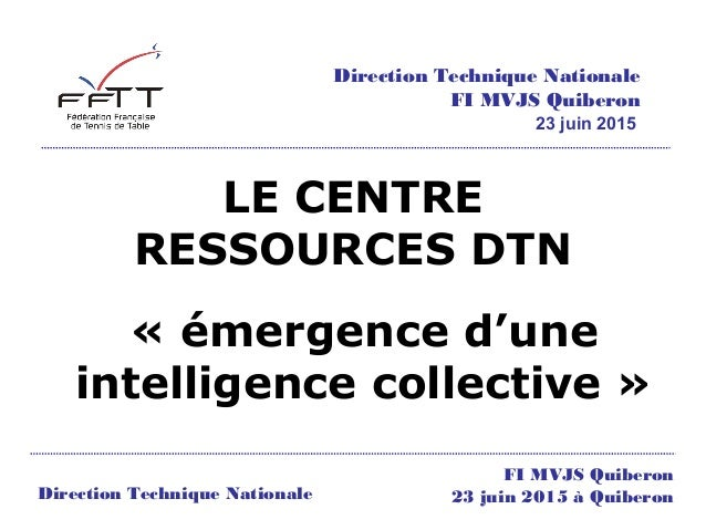 LE CENTRE RESSOURCES DTN « émergence d'une intelligence collective » Direction Technique Nationale FI MVJS Quiberon 23 jui...