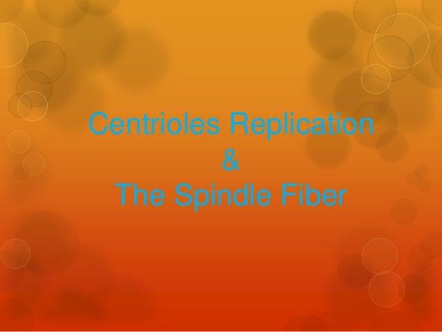 Centrioles Replication & The Spindle Fiber