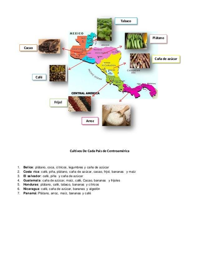 Cultivos De Cada País de Centroamérica 1. Belice: plátano, coca, cítricos, legumbres y caña de azúcar 2. Costa rica: café,...