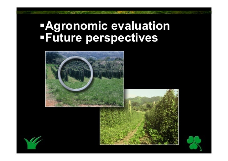 Agronomic evaluation Future perspectives