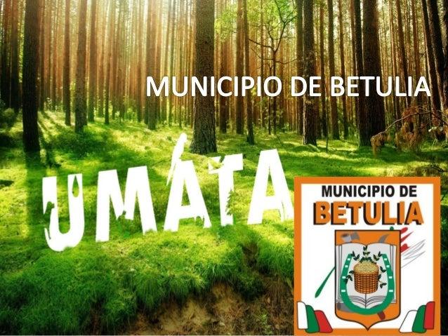 BETULIA – LE APUESTA AL PROYECTO DE CENTROS DE ACOPIO Con la finalidad de reactivar y darle continuidad al proceso de cons...