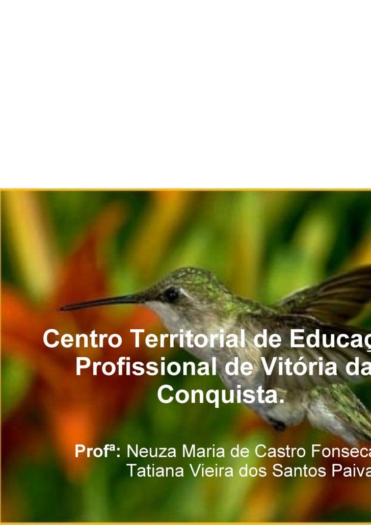 Centro Territorial de Educação Profissional de Vitória da Conquista.   Profª:  Neuza Maria de Castro Fonseca   Tatiana Vie...