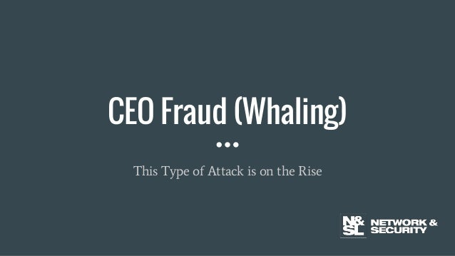 CEO Fraud (Whaling) This Type of Attack is on the Rise