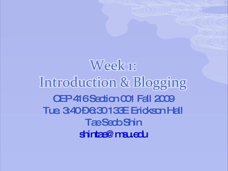 CEP 416 Section 001 Fall 2009 Tue. 3:40 – 6:30 133E Erickson Hall Tae Seob Shin [email_address]