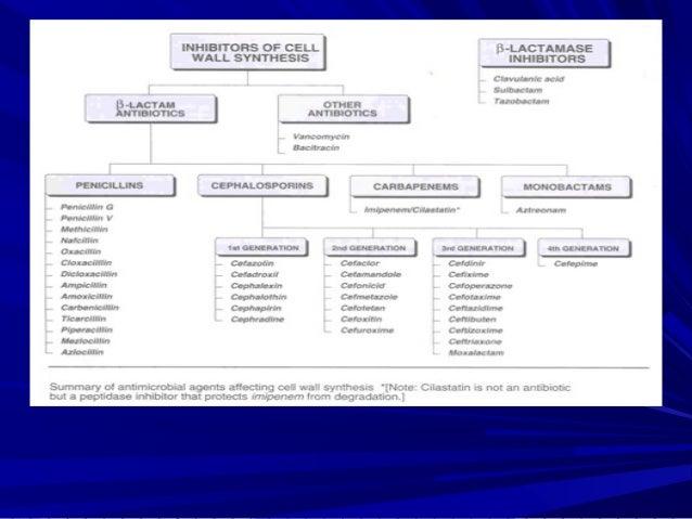 CephalosporinsCephalosporins B-Lactam antibiotics ( similar to penicillinsB-Lactam antibiotics ( similar to penicillins(( ...