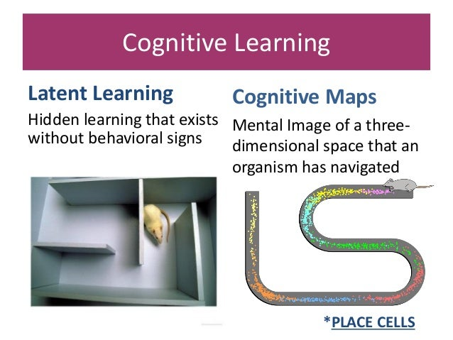 latent learning is a type of learning that
