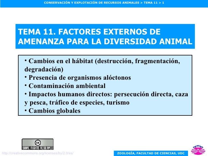 TEMA 11. FACTORES EXTERNOS DE AMENANZA PARA LA DIVERSIDAD ANIMAL <ul><ul><li>Cambios en el hábitat (destrucción, fragmenta...