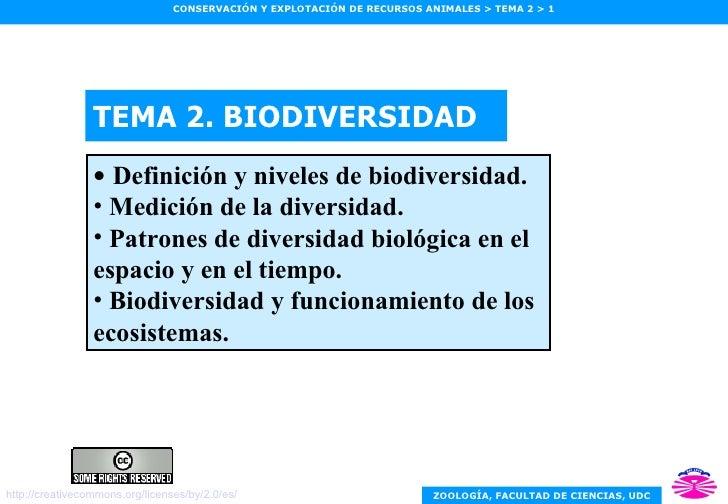 TEMA 2. BIODIVERSIDAD <ul><li>Definición y niveles de biodiversidad. </li></ul><ul><li>Medición de la diversidad. </li></u...