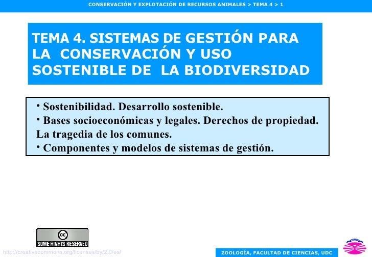 TEMA 4. SISTEMAS DE  GESTIÓN PARA LA  CONSERVACIÓN Y USO SOSTENIBLE DE  LA BIODIVERSIDAD <ul><ul><li>Sostenibilidad. Desar...