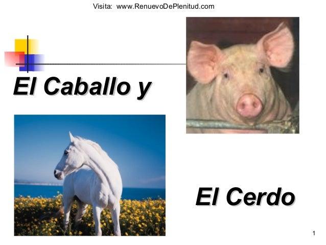 1 El Caballo yEl Caballo y El CerdoEl Cerdo Visita: www.RenuevoDePlenitud.com