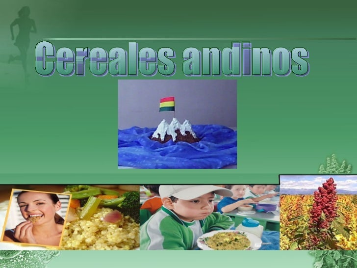 Cereales andinos