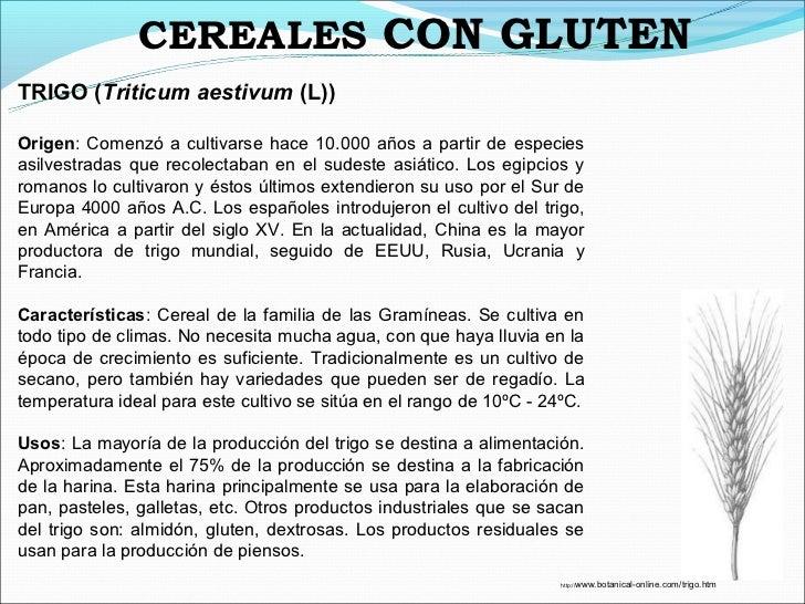 CEREALES CON GLUTENTRIGO (Triticum aestivum (L))Origen: Comenzó a cultivarse hace 10.000 años a partir de especiesasilvest...