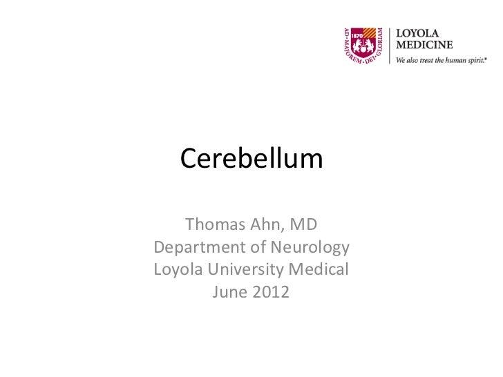 Cerebellum    Thomas Ahn, MDDepartment of NeurologyLoyola University Medical       June 2012