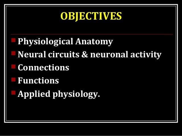OBJECTIVES  Physiological Anatomy  Neural circuits & neuronal activity  Connections  Functions  Applied physiology.