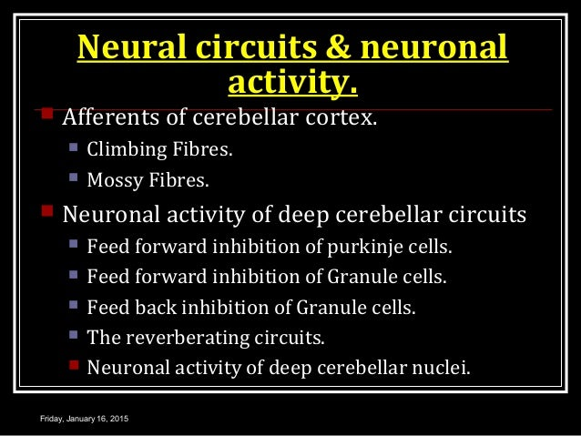 Neural circuits & neuronal activity.  Afferents of cerebellar cortex.  Climbing Fibres.  Mossy Fibres.  Neuronal activ...