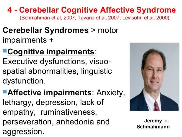 cerebellar cognitive affective syndrome pdf