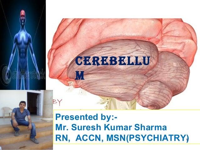 CEREBELLUMPresented by:-Mr. Suresh Kumar SharmaRN, ACCN, MSN(PSYCHIATRY)BY1