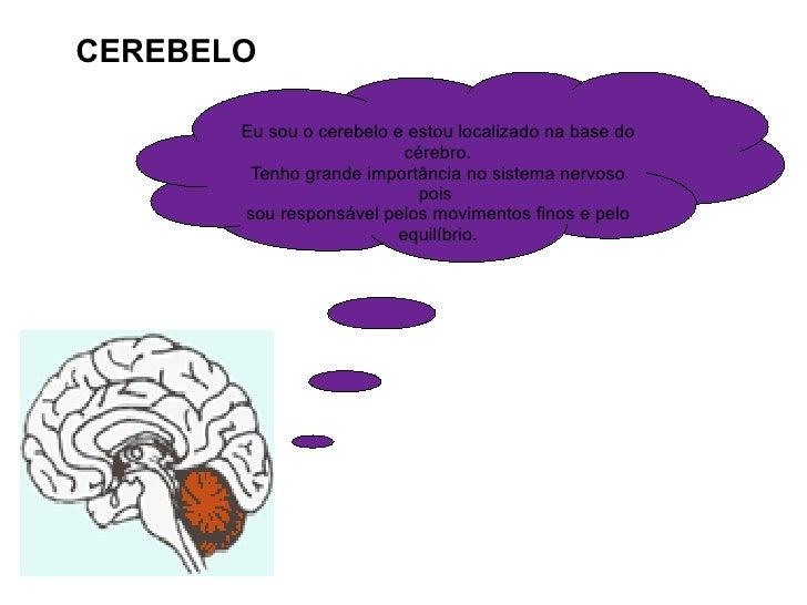 CEREBELO Eu sou o cerebelo e estou localizado na base do cérebro. Tenho grande importância no sistema nervoso pois  sou re...