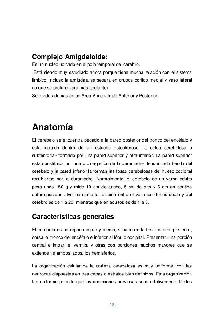 Complejo Amigdaloide:Es un núcleo ubicado en el polo temporal del cerebro.Está siendo muy estudiado ahora porque tiene muc...