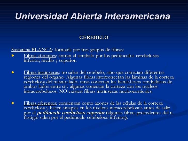<ul><li>CEREBELO </li></ul><ul><li>Sustancia BLANCA : formada por tres grupos de fibras: </li></ul><ul><li>Fibras aferente...