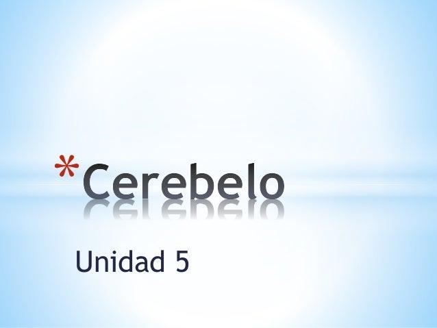 Unidad 5 *
