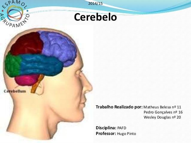 2014/15  Cerebelo  Trabalho Realizado por: Matheus Belesa nº 11  Pedro Gonçalves nº 16  Wesley Douglas nº 20  Disciplina: ...