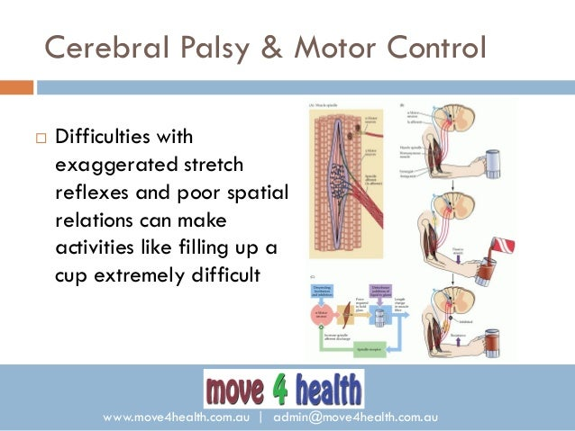 activities for adults with cerebral palsy