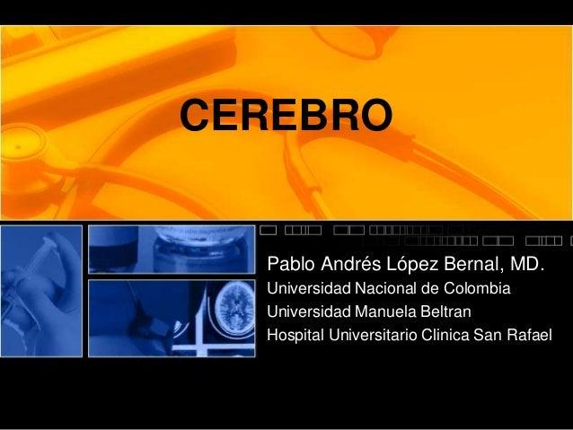 CEREBRO Pablo Andrés López Bernal, MD. Universidad Nacional de Colombia Universidad Manuela Beltran Hospital Universitario...