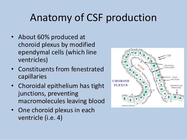 Cerebrospinal fluid (C...