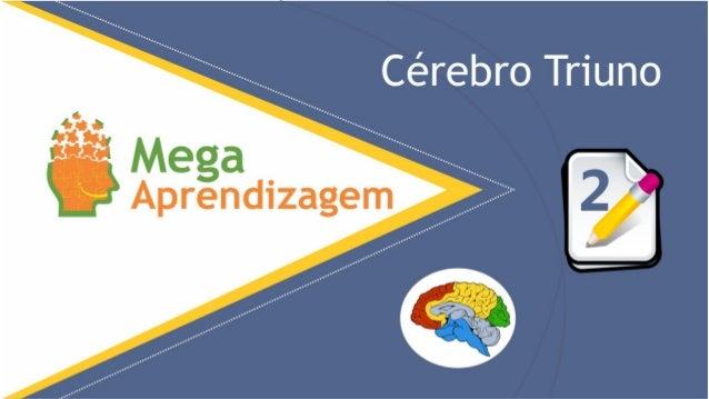 Nosso cérebro possui TRÊS camadas Cerebrais: Cérebros Reptiliano, Intermediário E Córtex. www.MegaAprendizagem.com.br COMO...