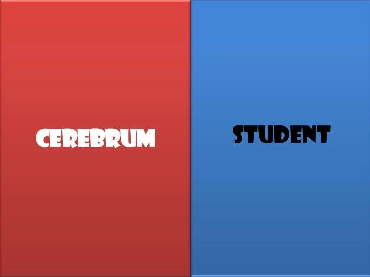 CEREBRUM   Student