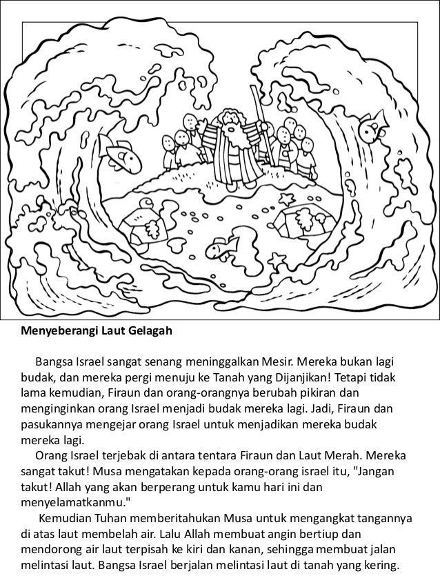 Cerita Perjanjian Lama Untuk Anak Anak Buku Mewarnai