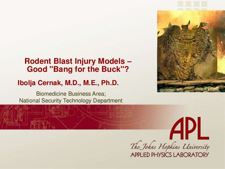 """Rodent Blast Injury Models – Good """"Bang for the Buck""""?<br />Ibolja Cernak, M.D., M.E., Ph.D.<br />Biomedicine Business Are..."""
