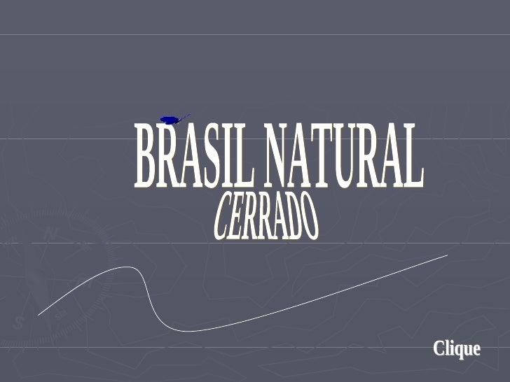 BRASIL NATURAL Clique CERRADO