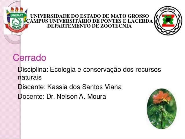 Cerrado Disciplina: Ecologia e conservação dos recursos naturais Discente: Kassia dos Santos Viana Docente: Dr. Nelson A. ...
