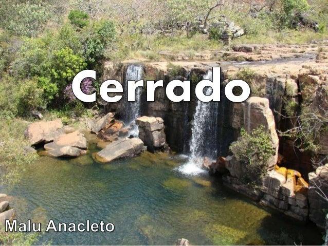 Solo da Região  Originando-se de espessas camadas de sedimentos que datam do Terciário, os solos do Bioma do Cerrado são ...