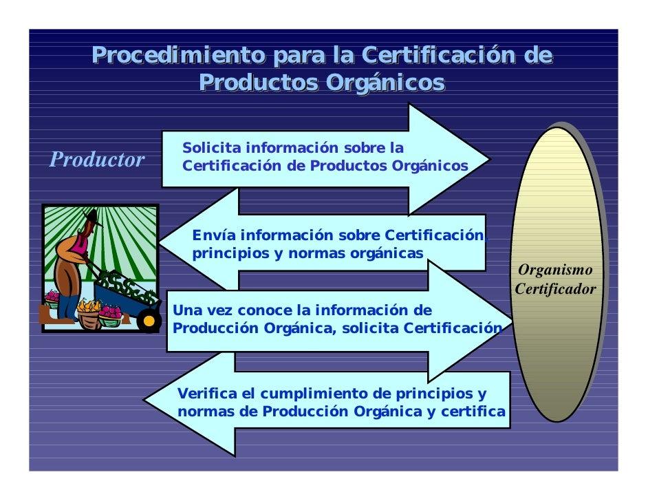 Procedimiento para la Certificación ... 99cb374dab1a