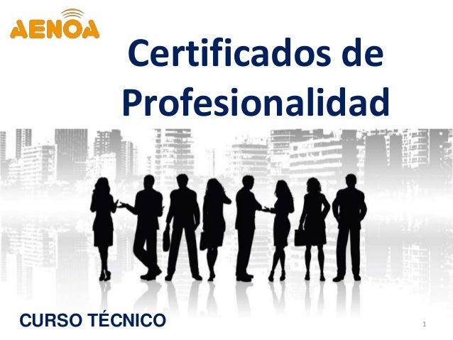 1 Certificados de Profesionalidad CURSO TÉCNICO