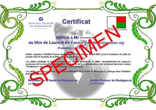 Certificat 2003