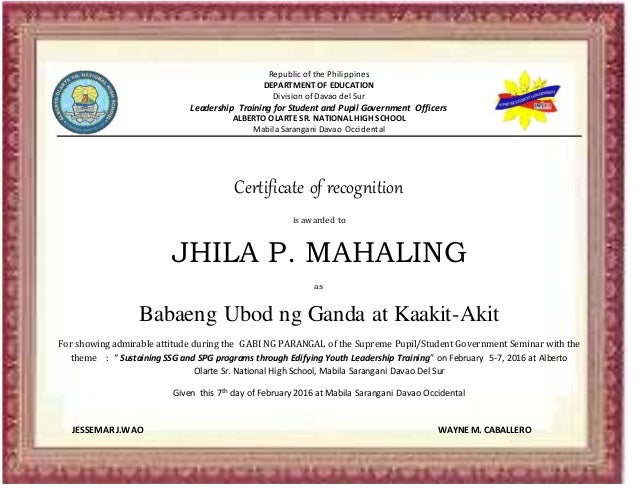 Certificate certificate republic of the philippines department of education division of davao del sur leadership training for student yadclub Image collections