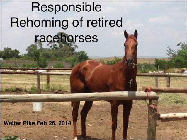 Responsible Rehoming of retired racehorses  !  Walter Pike Feb 26, 2014