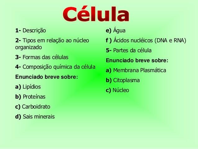 1- Descrição                      e) Água2- Tipos em relação ao núcleo     f ) Ácidos nucléicos (DNA e RNA)organizado     ...